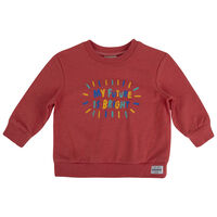 Baby Boys Wyatt Sweater -  red