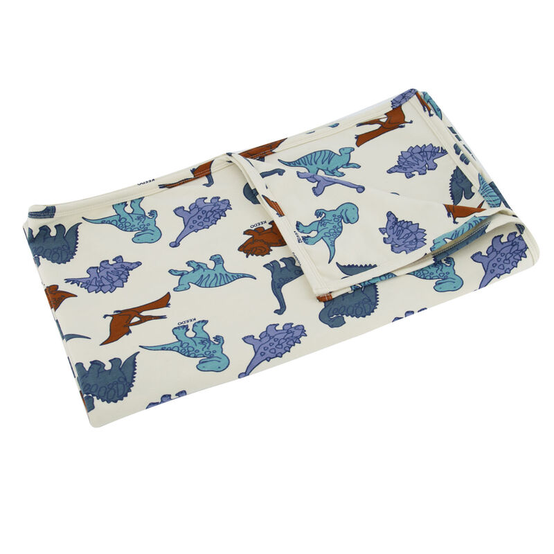 Baby Boys Dino Friends Blanket -  dc1000